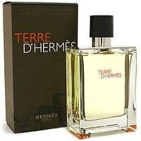 Мужская туалетная вода Hermes Terre D'hermes (Гермес Терре Де Гермес)