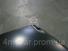 Капот Chevrolet Aveo T200 04-06 (производство Tempest ), код запчасти: 016 0105 280
