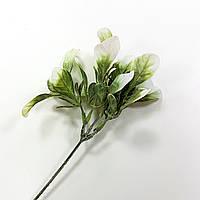 Трава морская капуста с белым длина 22см