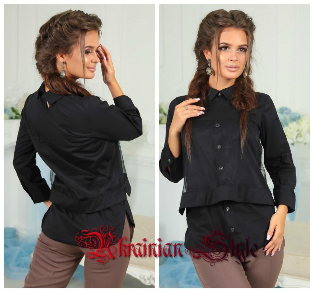 05c928d9fc2 Женская однотонная блузка с длинным рукавом. - Интернет-магазин
