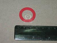 Шайба стержня фильтра масл. ГАЗЕЛЬ,ВОЛГА дв.402 (покупн. ЗМЗ) 24-1017033