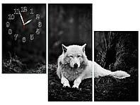 Модульные настенные часы картина Волк из трех модулей черно-белые большие-95х70см