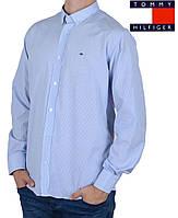 Стильная мужская рубашка в тонкую полоску Tommy Hilfiger