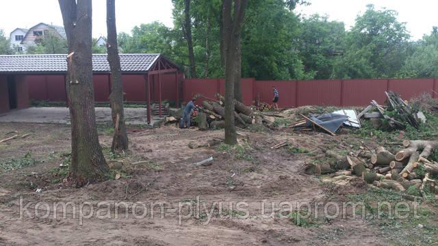 очистка участка, очистить участок, очистить участок от травы, очистить участок от деревьев, очистить участок от сорняков, очистить дачный участок, как очистить участок от зарослей, как очистить участок от камней, как очистить участок от кустарника, как очистить участок от клена, как очистить участок от мусора, как очистить участок от сухой травы