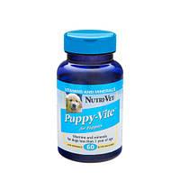 Нутри-Вет «ПАППИ-ВИТ» комплекс витаминов и микроэлементов для щенков, жевательные таблетки 60 штук