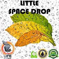 Ароматизатор Inawera Wera Garden LITTLE SPACE DROP (Литл Спейс Дроп) 10 мл
