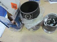 Гильзо-комплект ямз 238б (гп (нирезист.)+уплот.) (гр.б) (мотордеталь) (производство Мотордеталь ), код запчасти: 238Б1004008