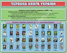 """Стенд в кабінет біології """"Червона книга України"""" 100х80 см"""