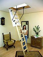 Чердачная лестница OMAN Termo Long, фото 1