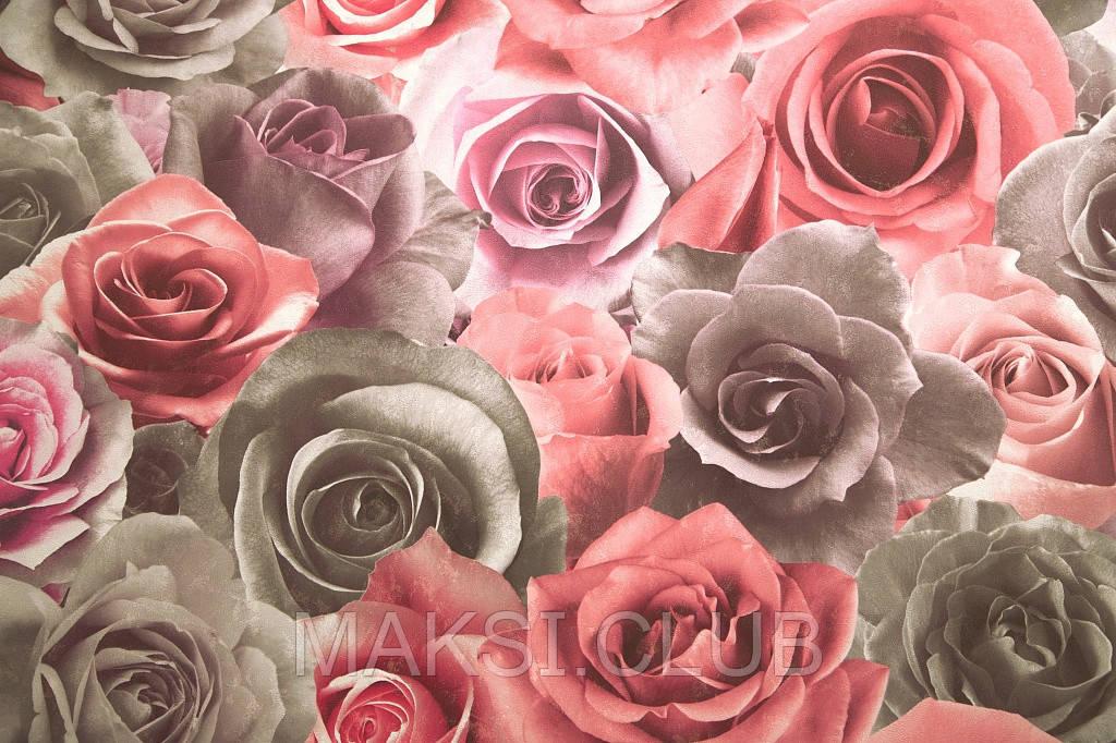фото обои 3д на стену цена фото цветы