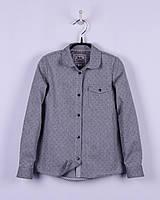 BoGi. Блуза для дівчинки сіра, довгий рукав. 101.039.0232.01