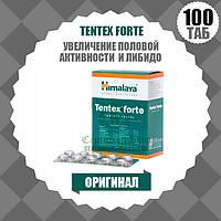 TENTEX FORTE (ТЕНТЕКС ФОРТЕ)   Для увеличения либидо и половой активности