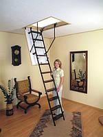Горищні сходи OMAN Metal T3, фото 1
