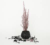 """Сувениры из бетона и растений из Японии от """"Artis Green"""". Свежесть без полива!"""