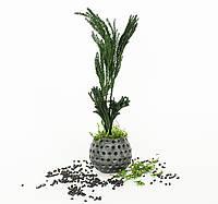 """Сувениры из бетона и растений из Японии от """"Artis Green"""". Свежесть без полива! S37"""
