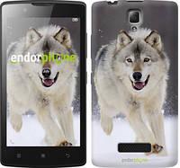 "Чехол на Lenovo A2010 Бегущий волк ""826c-216-716"""