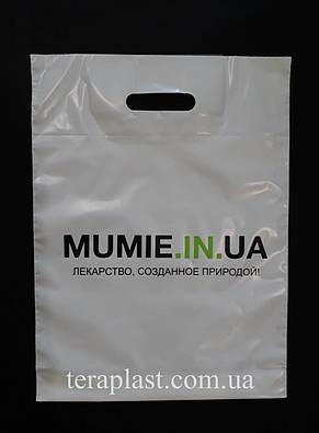 Пакет с вырубной ручкой 300х400, 50 мкм печать 2 цвет, фото 2