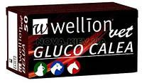 Тест-полоски Wellion Gluco Calea для животных 50 шт