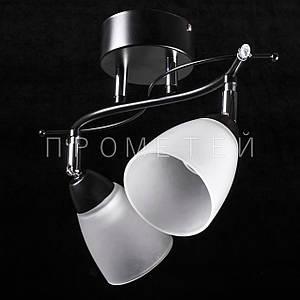 Припотолочная люстра спот (направляемая) на две лампочки (черный). P3-01615/2C/BK+CR+WT