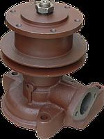 Водяной насос (помпа) МТЗ-80, Д-240,243 (240-1307010) Чугунный корпус