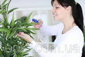 Листовая подкормка для комнатных растений