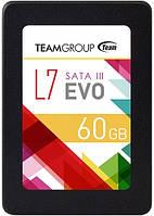SATA-SSD-TLC 60GB Team L7 EVO (T253L7060GTC101)