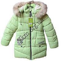 Куртка детская для девочек 122-146см. лет светло-салатовая Китай Оптом Li 17-3