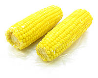 Кукурудза в початках