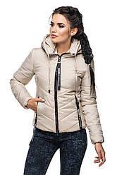 Модные куртки женские осень весна