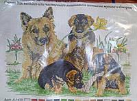 Рисунок на канве для вышивки Овчарка со щенками