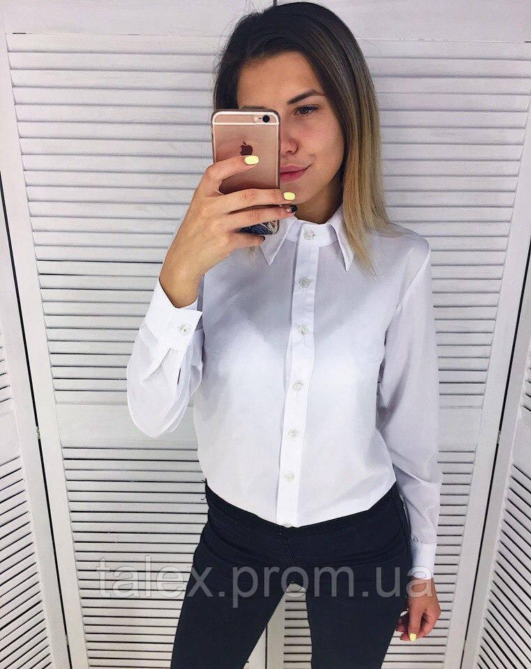 Рубашка женская белая и голубая 7df60bcc68589