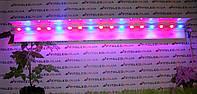 Фитосветильники для роста растений LED