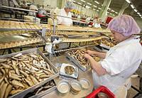 Миючі для рибопереробних підприємств, фото 1