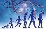 Обнаружены 16 генетических маркеров долголетия.