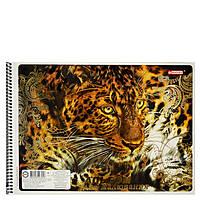 Альбом для малювання Бріск Magika на спіралі 40 аркушів