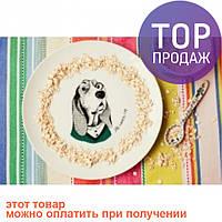 Тарелка Собака-дворецкий / Декорации для дома