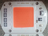 Фито светодиод COB  50вт (w), полный спектр для роста растений, с встроенным драйвером 220В