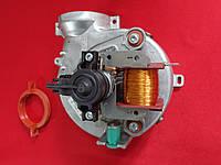 Вентилятор Ariston Genus 24 FF, фото 1