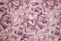 Обои, цветы, крупный рисунок, обои 3D на стену, винил на флизелине, горячего тиснения, 7460-58, 1,06х10м