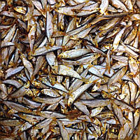 Рыба тюлька копченая к пиву и не только