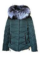 Зимняя куртка Hailuozi 17-08 (XL-5XL) Бутылка