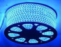 Світлодіодна LED стрічка 5050smd 220V IP68 синя 60 LED
