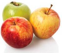 Комплексное решение по хранению яблок
