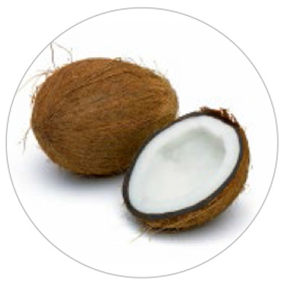ico-Coconut-Foam