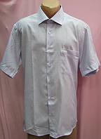 Рубашка мужская+фото, фото 1