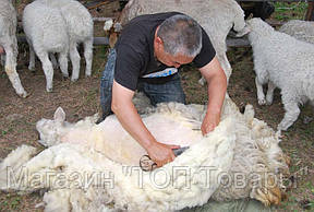 Ножницы для стрижки овец!Акция, фото 2
