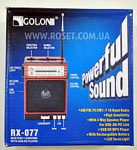 Проигрыватель переносной - Golon RX-077 MP3 USB SD FM Speaker FlashLight