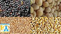 Предпосевная обработка семян озимых культур микроудобрениями