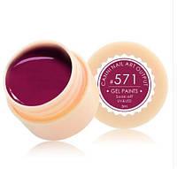 Гель краска CANNI цвет 571