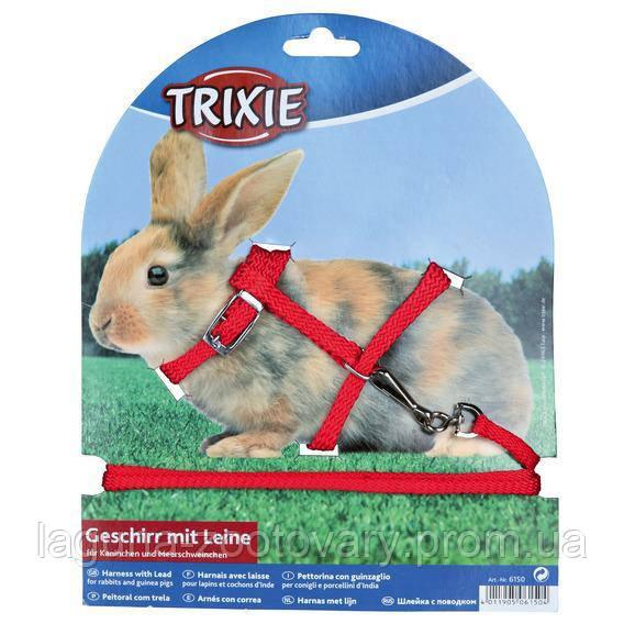 Шлейка с поводком 1.2м/8мм для кроликов